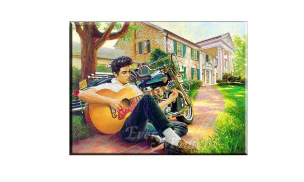 Vecka 18 – Elvis Presley