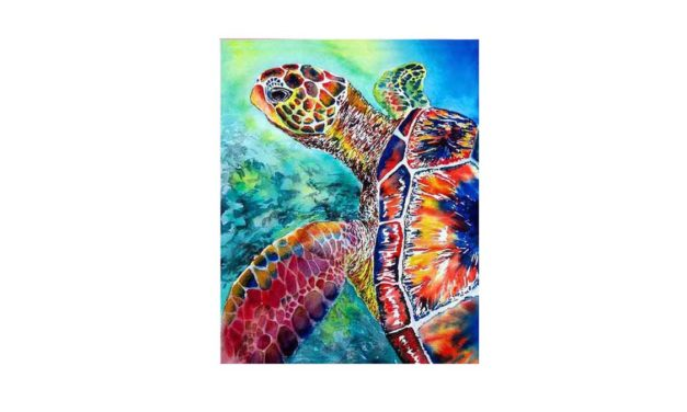 Vecka 29 – Färgglada sköldpadda