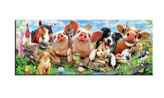 Vecka 39 – Glada djur