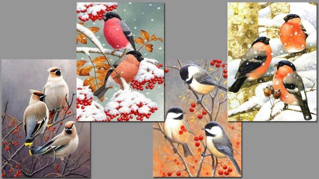 småfåglar i höst och vinter miljö