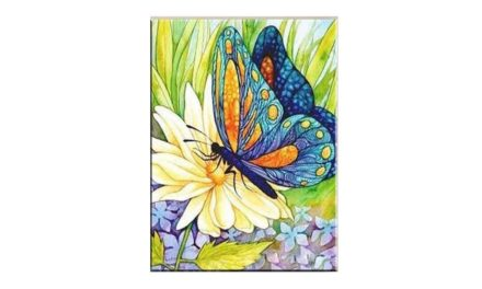 Vecka 33 – Fjäril på blomma