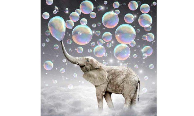 Vecka 44 – Bubbelblåsande elefant