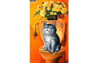 Vecka 6 – Katt på en toalett