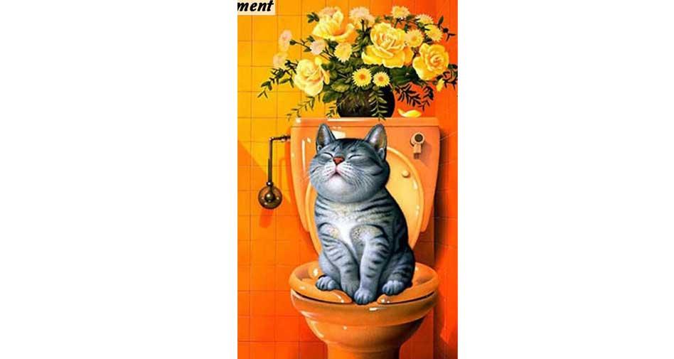 katt på toalett