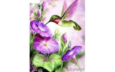 Vecka 14 – Kolibri