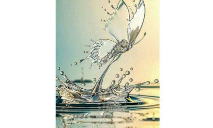 Vecka 16 – Fjäril av vatten